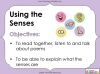 Using the Senses (KS1 Poetry Unit) Teaching Resources (slide 3/59)